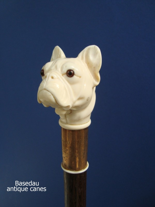 A french bulldog glove holder